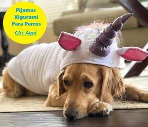 pijamas kigurumi para perros